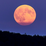 Don't miss the next Supermoon Feb 19