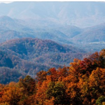 Southern Living magazine's Fall Foliage Map